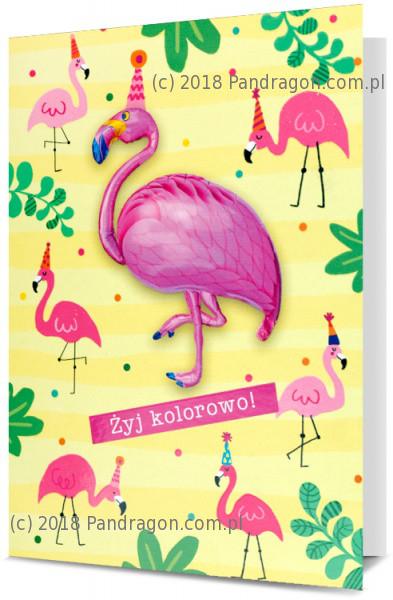 Karnet z balonem / K. Balloon-14