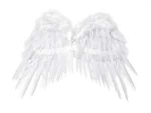 Skrzydła anioła, biały, 53x37cm