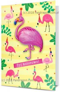 Karnet z balonem K. Balloon-14